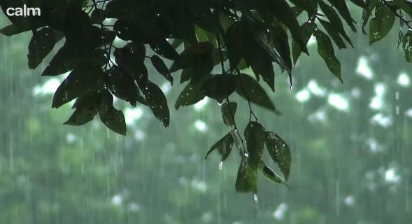 calm.com rain